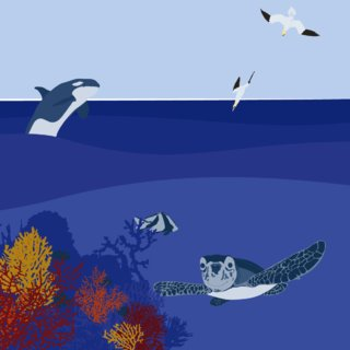 World Ocean Day 3/3