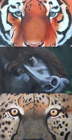 Série d'illustrations à l'acrylique // A4 - Illustration réalisée pour un jeu éducatif sur le thème des animaux du monde