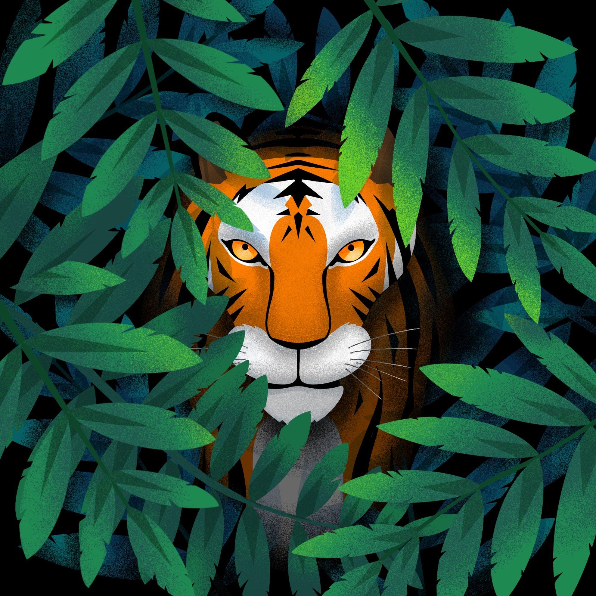 Travail personnel / Tiger