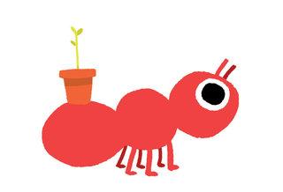 fourmis qui jardine