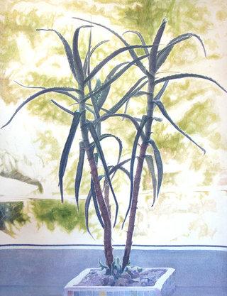 sans titre, 2012, aquarelle sur  papier,   65x50   cm
