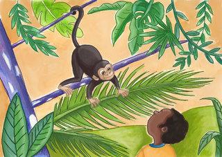 Paki et la rencontre du singe