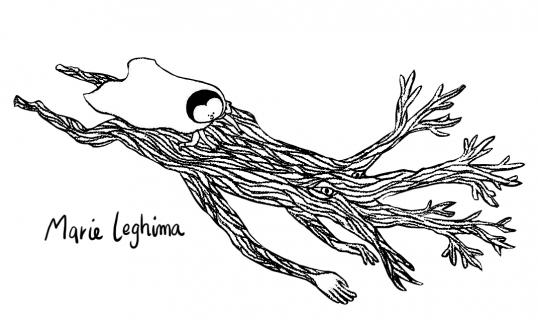 Marie leghima Portfolio