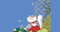 Chat printemps - Marina Pessarrodona-illustrateur jeunesse